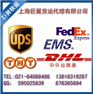 Shanghai DHL express powder to the United States, Britain, France, Germany